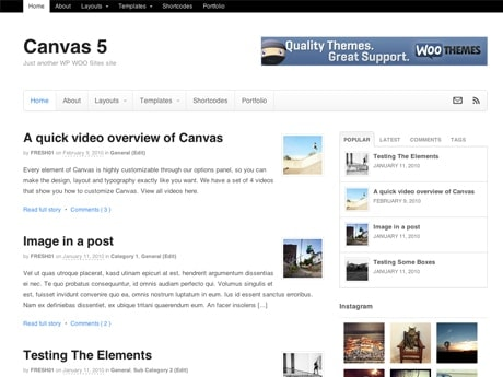 Theme Review – WooThemes Canvas | Pixelyzed – On Building